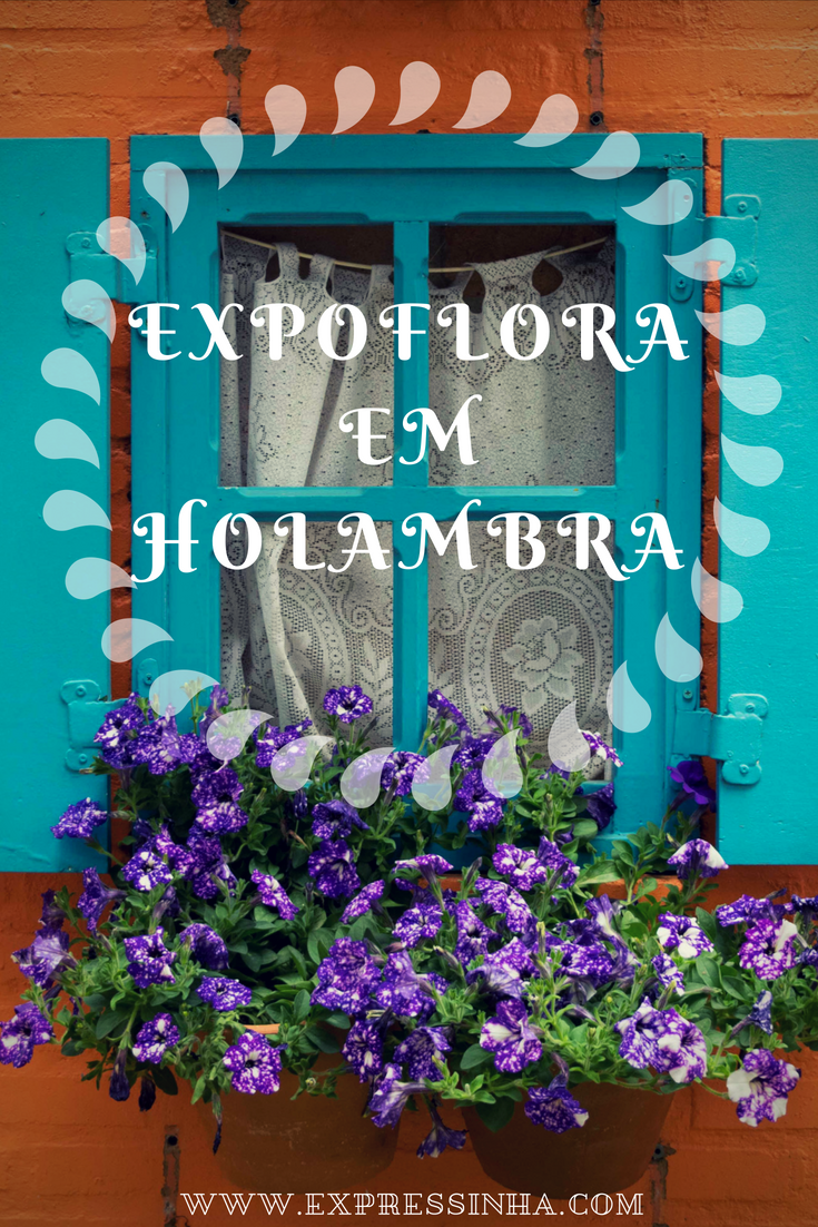 Visite A Expoflora Em Holambra Cidade Das Flores Guias De