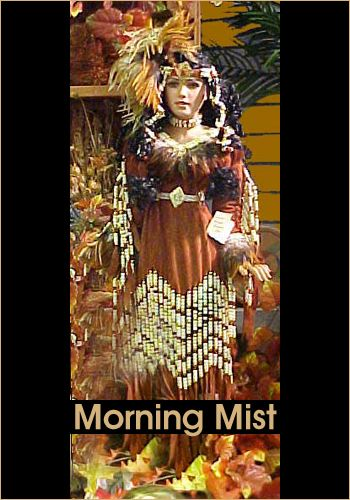 Morning Mist by Rustie - Rustie Dolls - Native American Indian #indianbeddoll