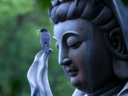 Kuan Yin, Goddess of Mercy