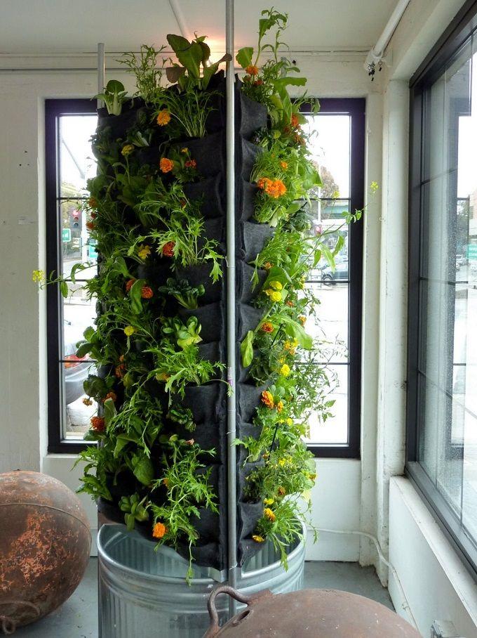 indoor vegetable garden design ideas