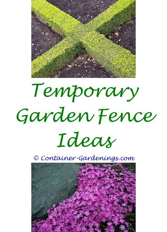 Starting A Small Garden | Small Garden Design, Garden Ideas And Small  Gardens