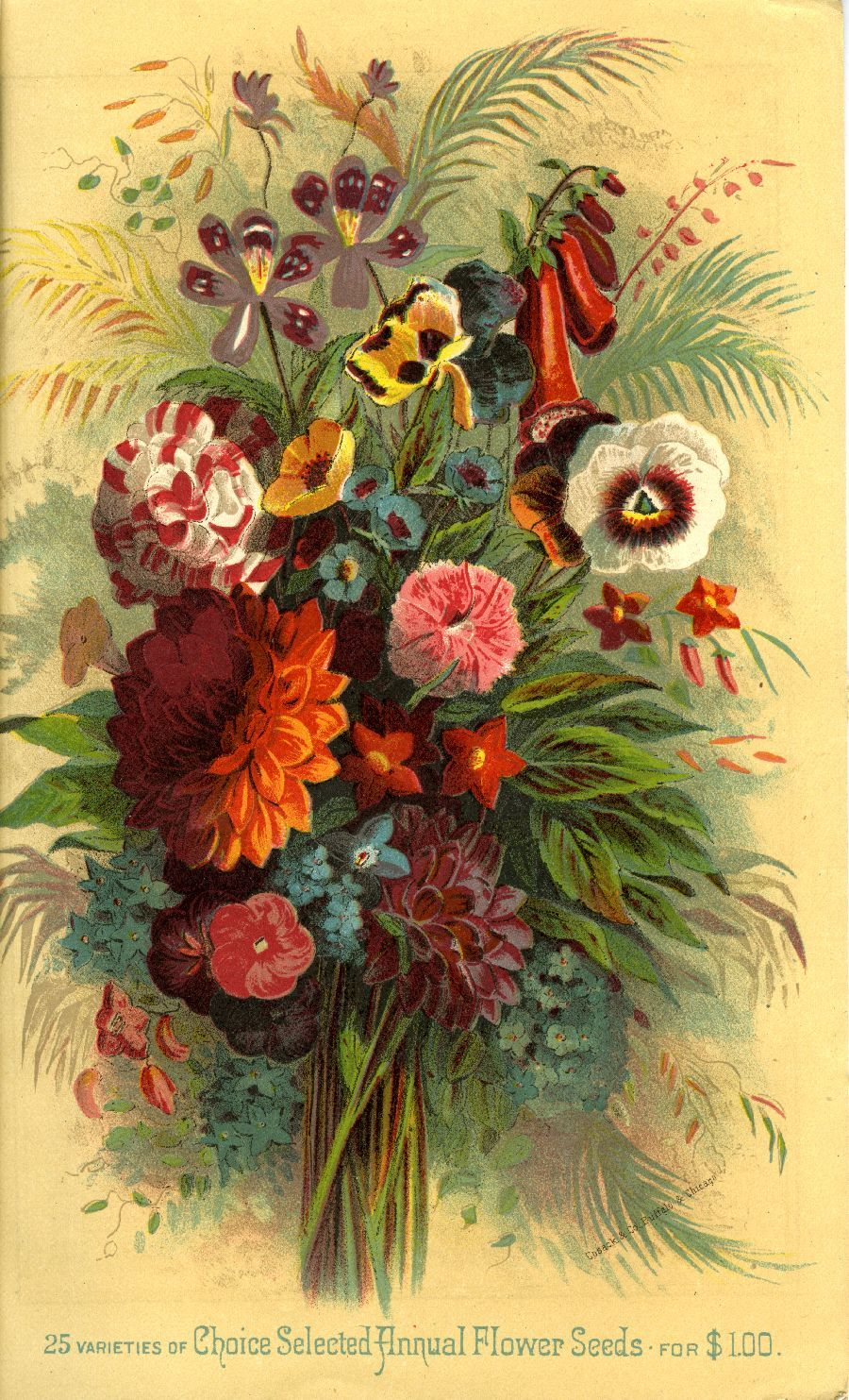 "Breck's of Boston catalogue 1883 -   "" 25 varieties of Choice Selected Annual Flower Seeds for $1.00"""
