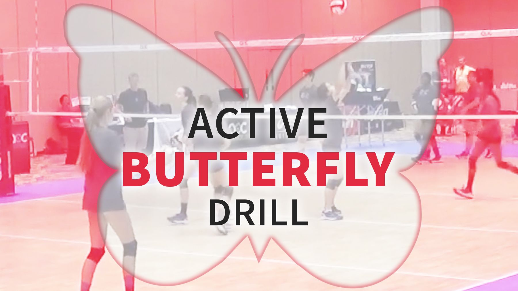 Active Butterfly Drill The Art Of Coaching Volleyball Coaching Volleyball Volleyball Skills Drill