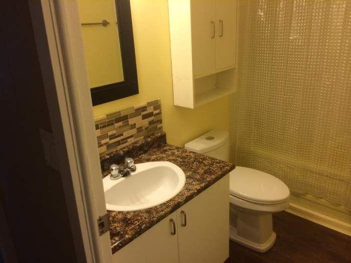Affordable Single Wide Remodeling Ideas, Mobile Home Bathroom Sink