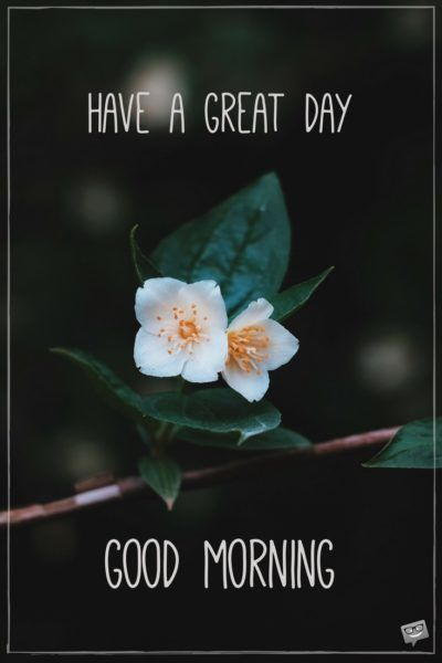 Fresh Inspirational Good Morning Quotes For The Day Get On The Right Track Part 4 Good Morning Quotes Good Morning Greetings Good Morning Wednesday