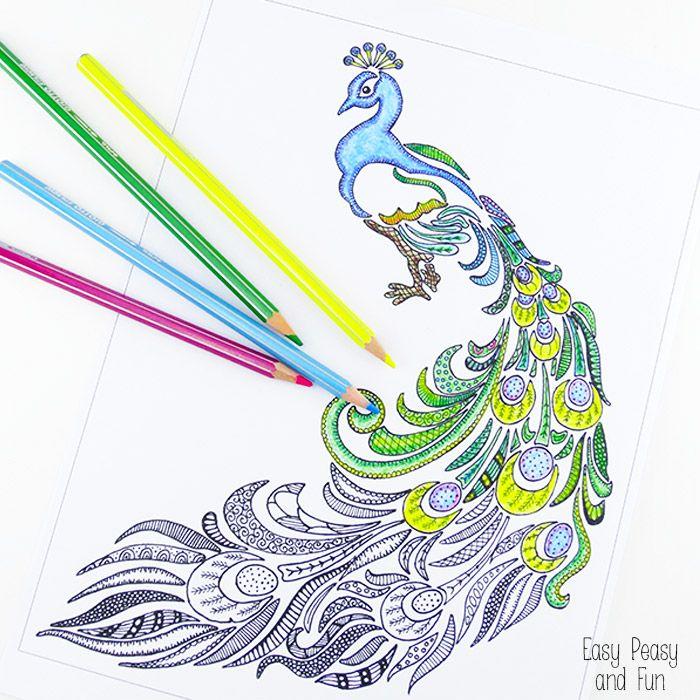 Peacock Coloring Page for Adults   Colorante, Páginas para colorear ...