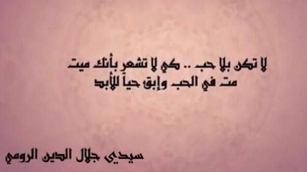 م ت في الحب وابقى حيا للأبد Rumi Quotes Some Words Quotes