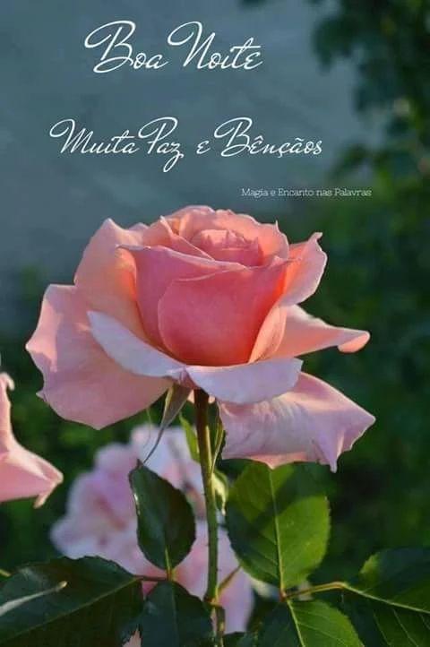 Imagens De Boa Noite Jesus Com Frases Citações Da Bíblia Flowers