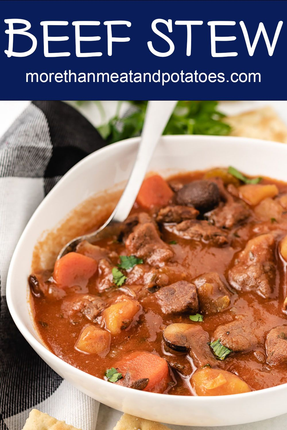 Beef Stew With Tomato Sauce Recipe Chicken And Beef Recipe Beef Stew Tomato Sauce Tomato Beef Stew