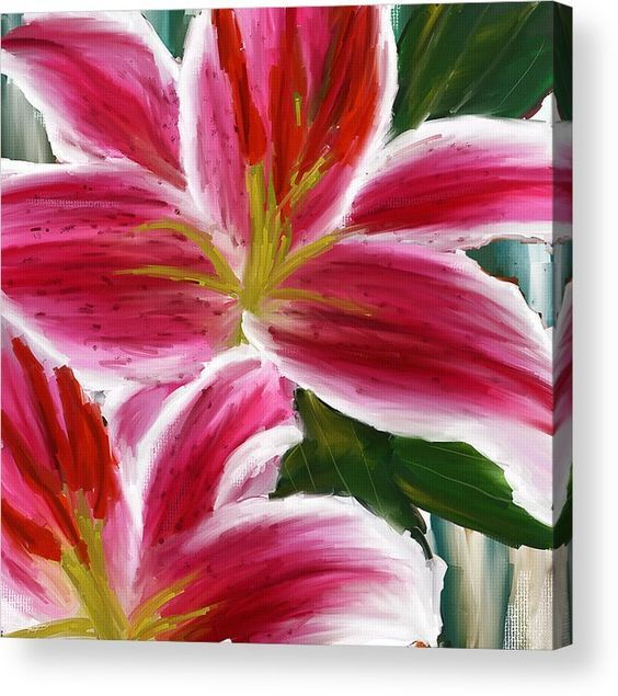 Asiatic Lily Asiatic Lily Paintings Pink Paintings Acrylic Print By Lourry Legarde Lily Painting Acrylic Painting Flowers Pink Painting