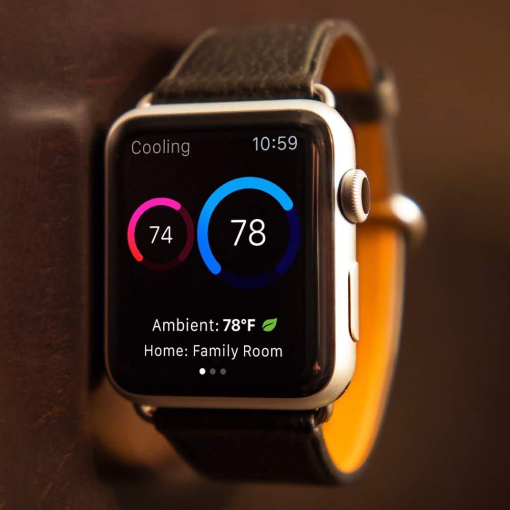 Thermo Watch Works with Nest Store Apple watch, Nest