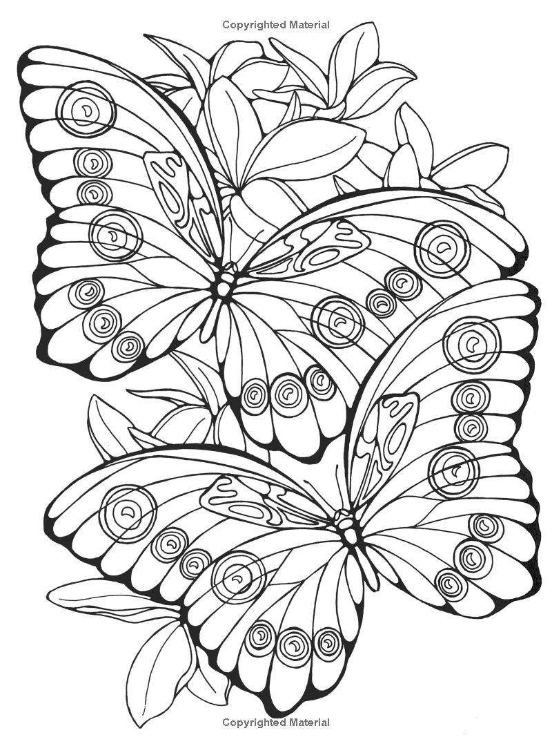 Designs for Coloring: Butterflies: Ruth Heller | sister was here ...