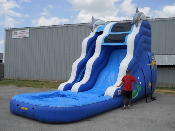 DOLPHIN WATER SLIDE RENTAL | Holly daze | Water slide rentals, Water