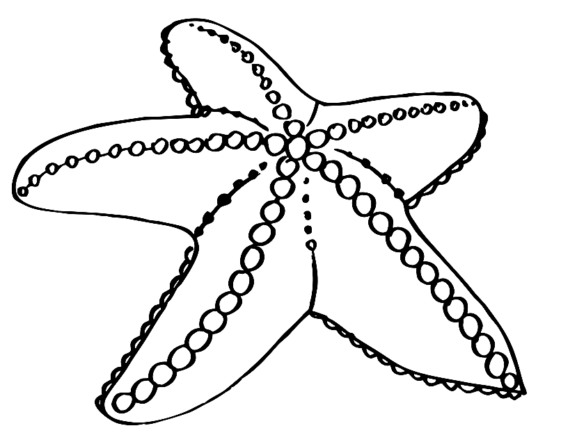 Starfish Coloring Pages To Download And Print For Free Coloring Pages To Print Coloring Pages For Kids Cute Coloring Pages
