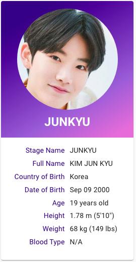 Kim Junkyu Treasure Profile Kpop Profiles Treasures Yg Entertainment