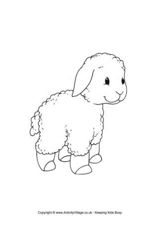 Sheep Colouring Pages Sheep Drawing Cute Coloring Pages Coloring Pages