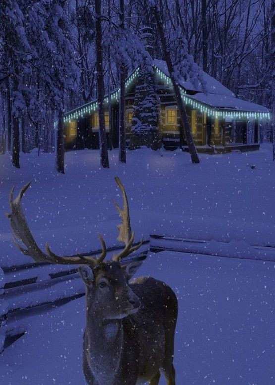 A snowy night...