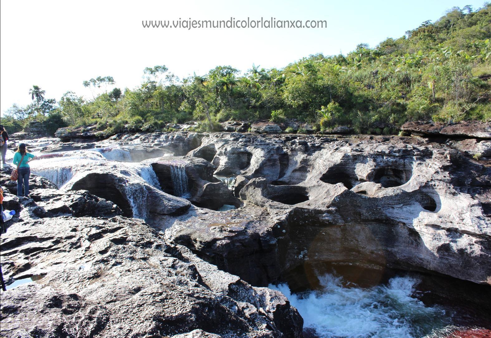 Caño Cristales en la Serranía de la Macarena