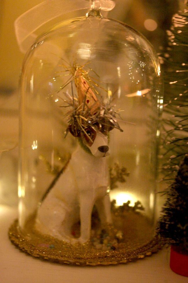 Épinglé par Debi Ortega sur Under the Glass Pinterest Bocaux