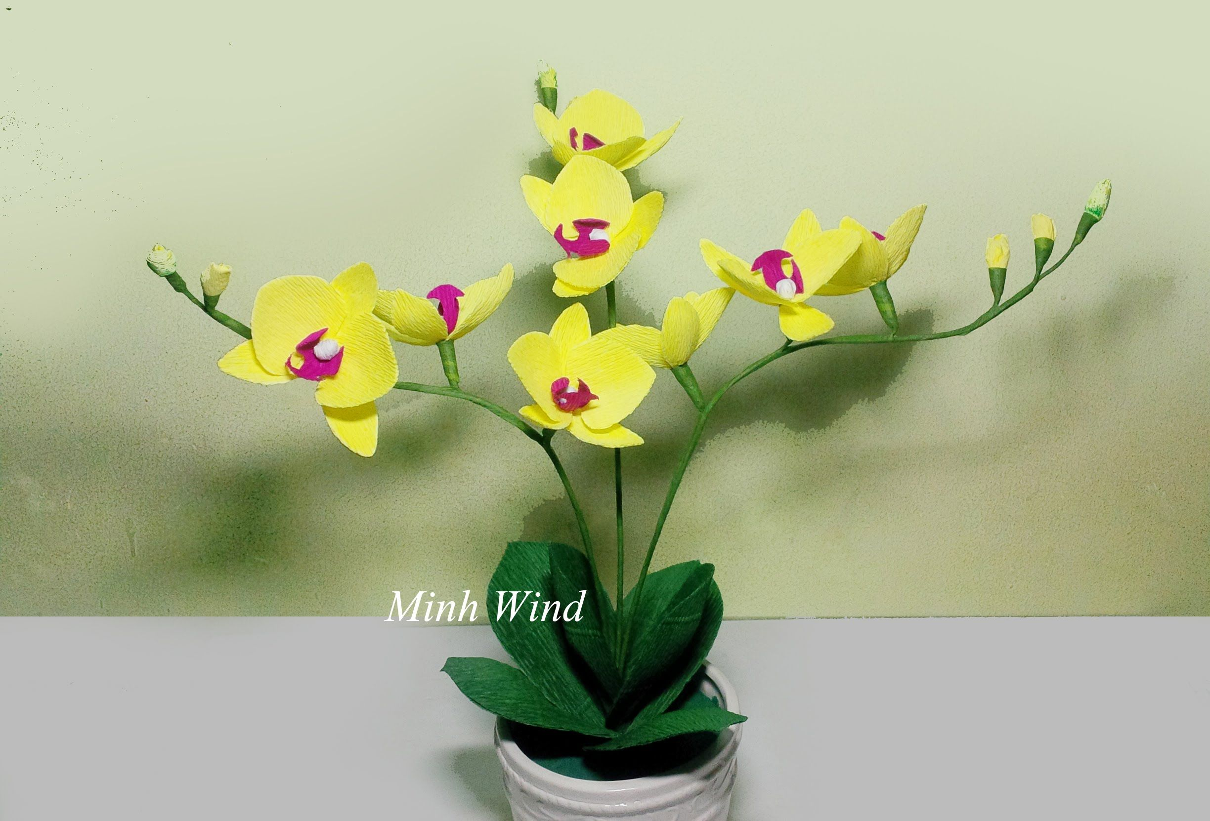 Lots Of Video Tutorial How To Make Paper Flower Step By Step Here