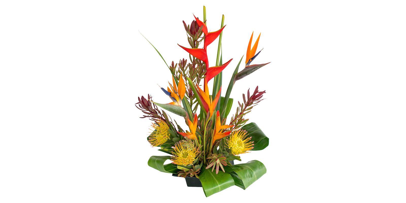Tropical Flower Arrangement Diy Pumehana Assortment Pinterest