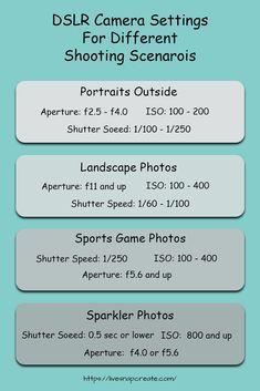 Photographie DSLR pour les débutants – Le guide définitif – Live Snap Create   – Photography