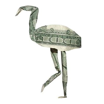 Money Origami Flamingo Craft Pinterest Flamingo Origami And Craft