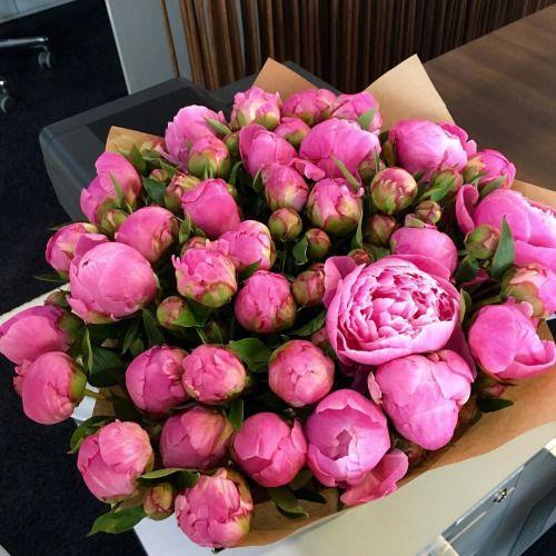 Пин от пользователя Юлия на доске цветы | Цветение вишни ...