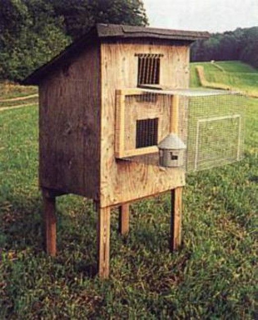 Click to see full-size image | Pigeon loft | Pinterest ...