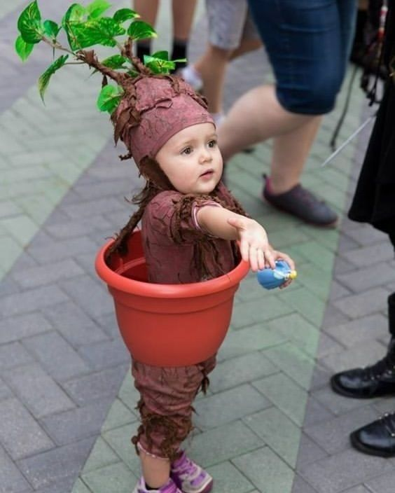 Baby blumentopf faschingskost m kost me karneval ideen for Blumentopf verkleidung