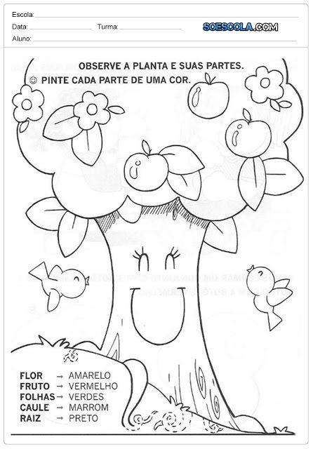 Atividades sobre o Dia da Árvore - 21 de Setembro | Ideias Educação ...