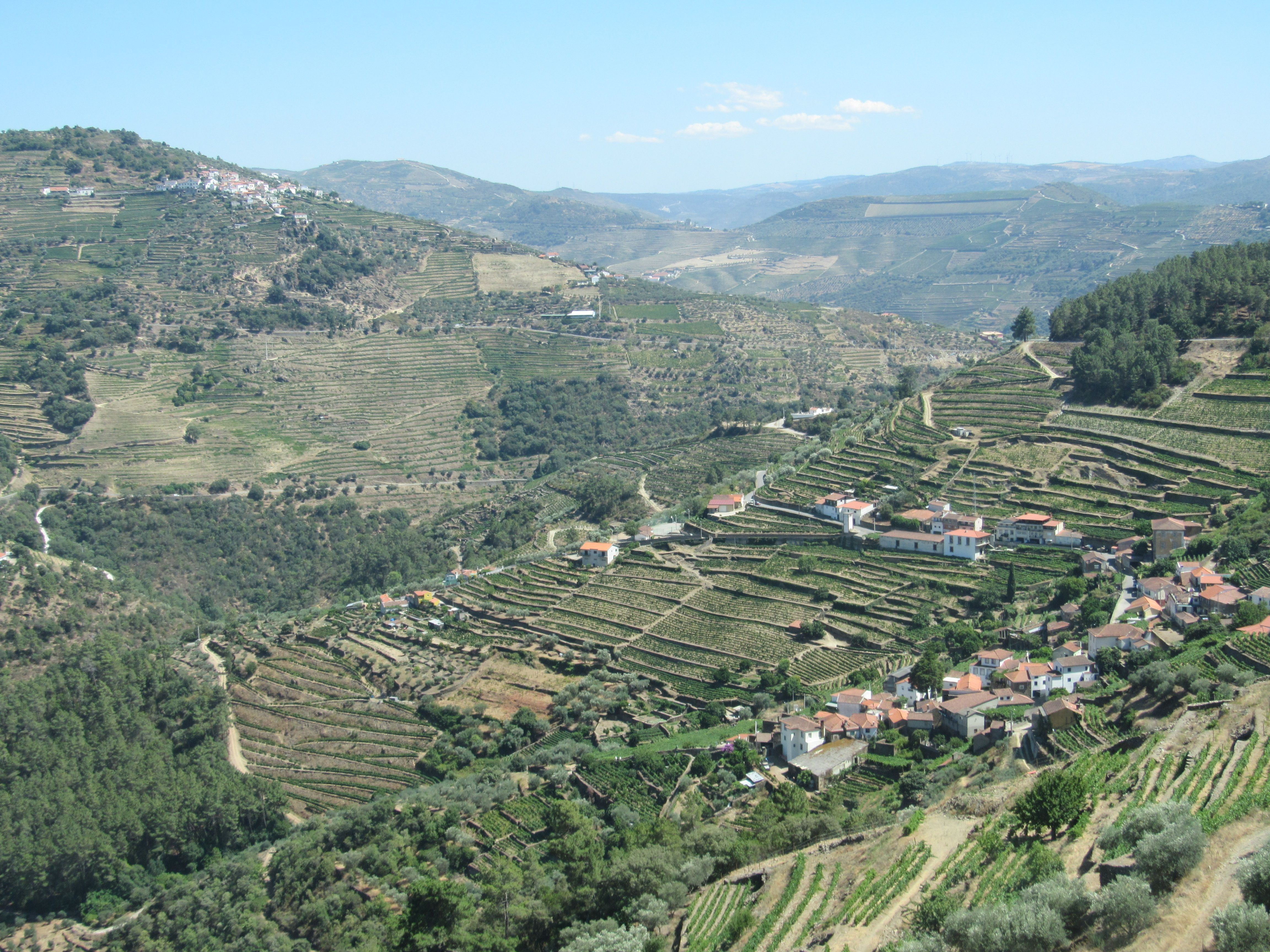 Estrada entre Pinhão e Sabrosa