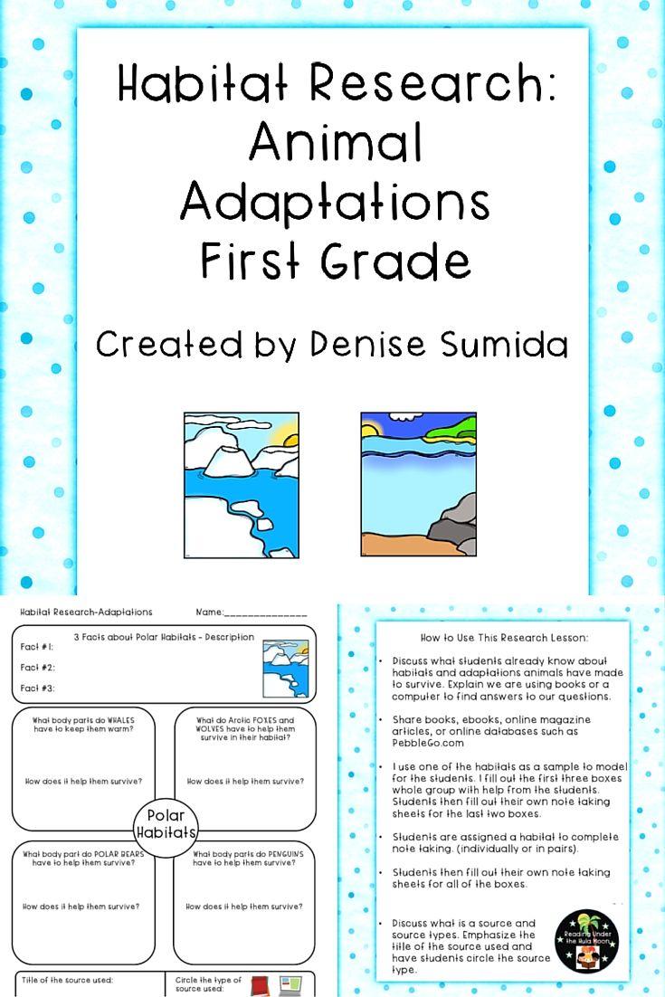 Animal habitat lesson for first grade
