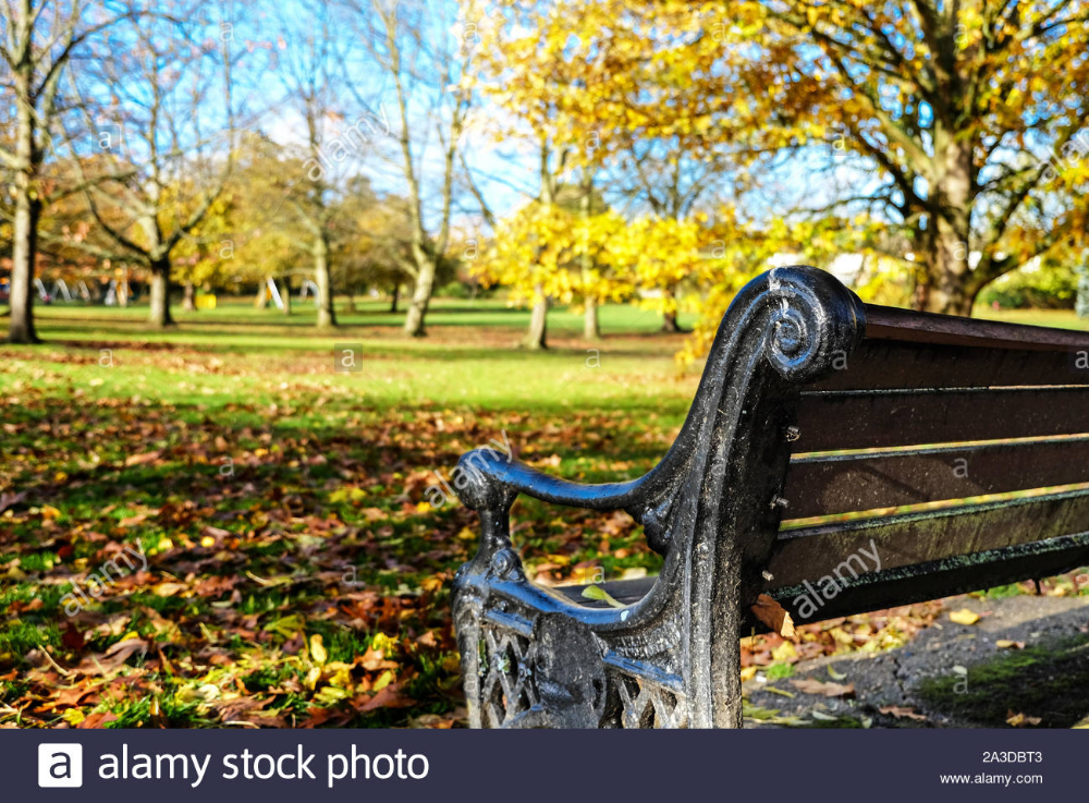 Close Up Of The Back Of An Empty Park Bench With Autumn Coloured Trees In The Background Against A Blue Sky Stonegrove Par Park Bench Stock Photos Fall Colors