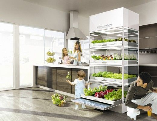 Yes Please I Want The Kitchen Nano Garden But It S Not Out Yet With Images Kitchen Garden Window Home And Garden Micro Garden