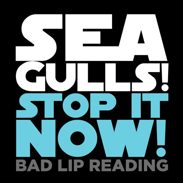 Seagulls! (Stop It Now), a song by Bad Lip Reading on