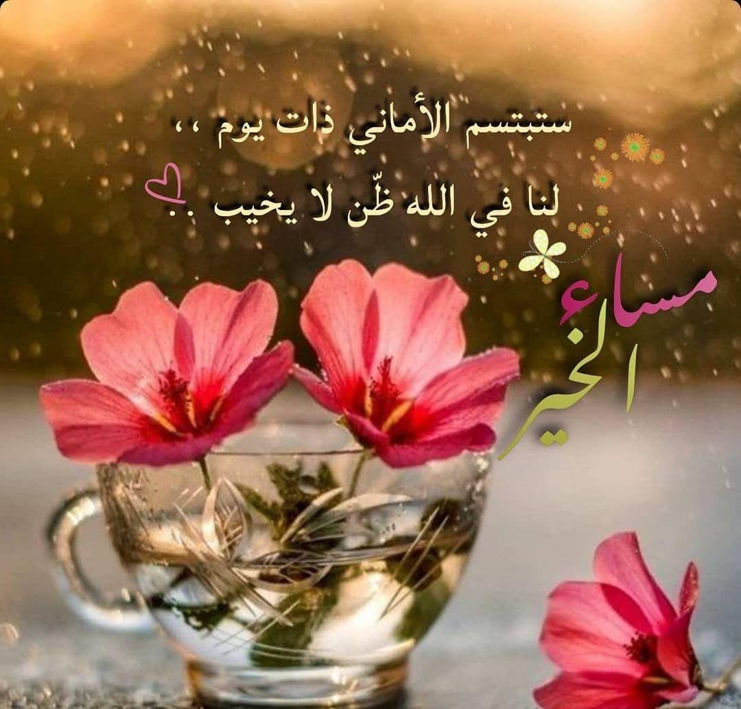 مساء الخير كلمات جميلة Flower Wallpaper Good Morning Arabic Good Evening