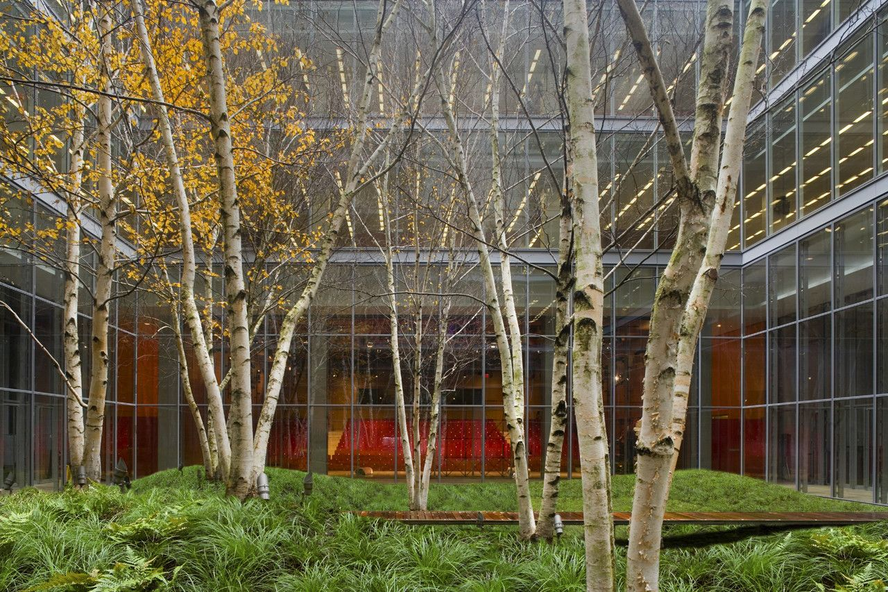 the new york times building lobby garden / hm white site