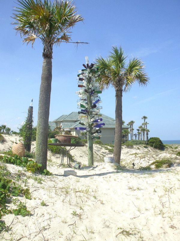 Bottle tree on Amelia Island Coastal pictures, Amelia