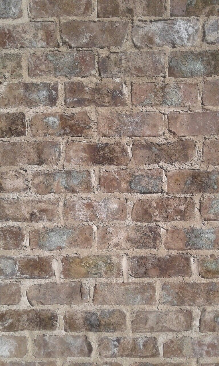 Cherokee Old Savannah Tumbled Brick With White Mortar The Mortar Is A Messy Smear Like An Old Suvanna Hom Brick Exterior House Exterior Brick Brick And Stone