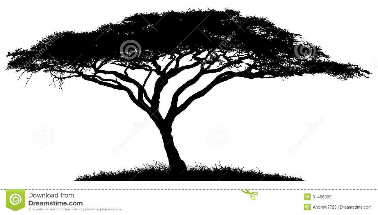 Silhouette Of The Tree Acacia African Tree Tree Painting Tree Silhouette