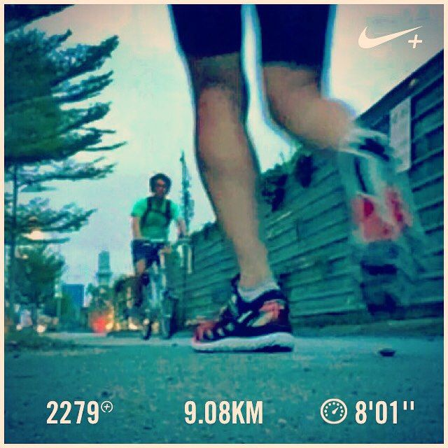 Trying! Barry is running... #barryisrunning #run #runsg #nikeplus #running #runhappy #runnerscommunity #runnerinspiration #runforabettertomorrow #AmigosRunning #correr #Corrida #instarun #instarunner #iphonerunner #iphoneonly #marathontraining #wearetherunners #coolrun #worlderunners #brooks #brookstranscend2