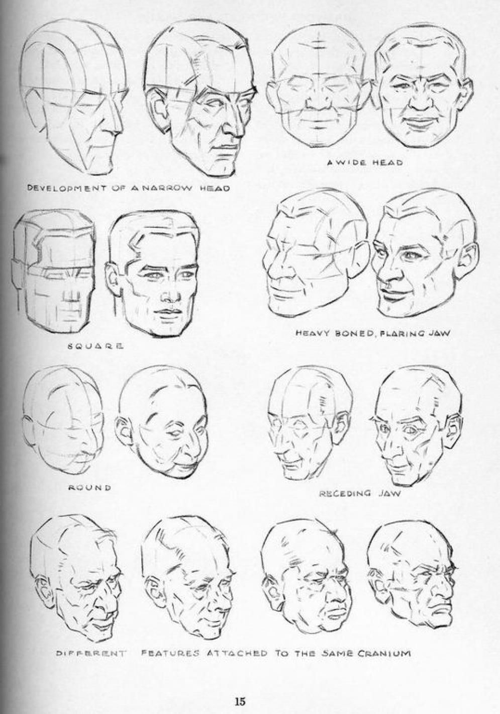 Head More Ways Andrew Loomis Drawing Heads Drawings