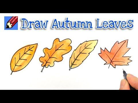 How To Draw Autumn Or Fall Leaves Real Easy Youtube Leaf