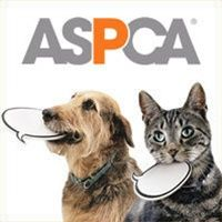 The American Society For The Prevention Of Cruelty To Animals Aspca We Are Their Voice Aspca Animal Charities Animal Rescue