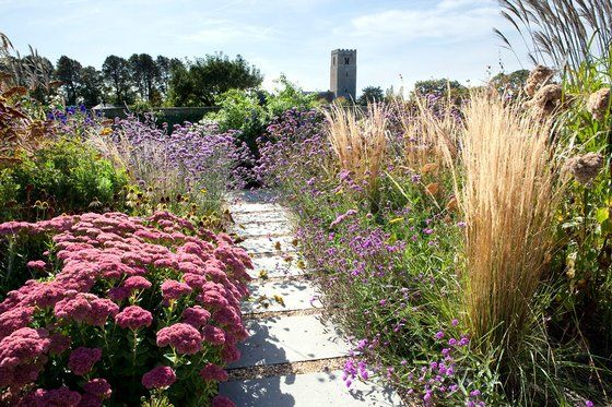 A drought tolerant planting scheme including sedums for Grasses planting scheme