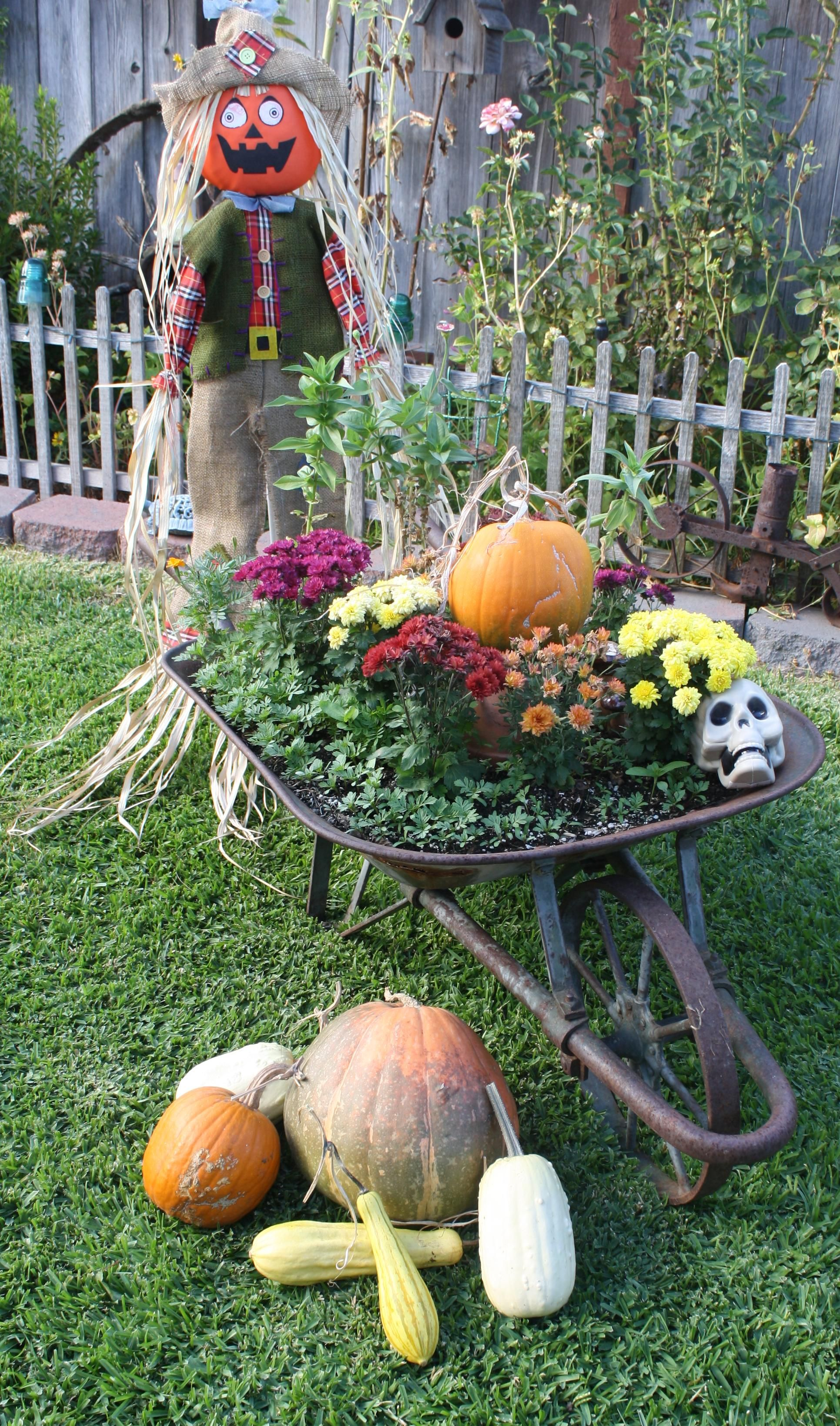 Cute Funny Scarecrow With A Wheel Barrel Pumpkins And Gourds