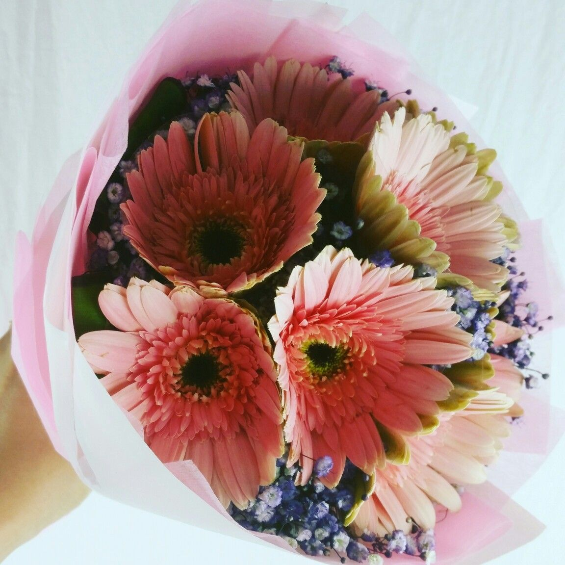 Happy Weekend. Send flower delivery Singapore to brighten