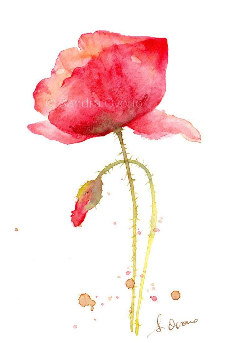 Reproduction Aquarelle Coquelicot Peinture De Par Sandraovono Mohn Malerei Aquarell Mohnblumen Blumen Aquarell