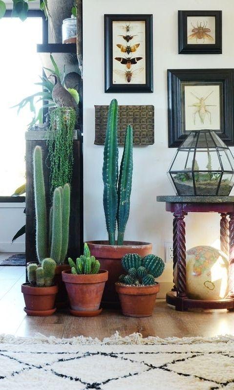 Decorar con plantas ideas para llenar tu casa de vida - Decoracion natural interiores ...